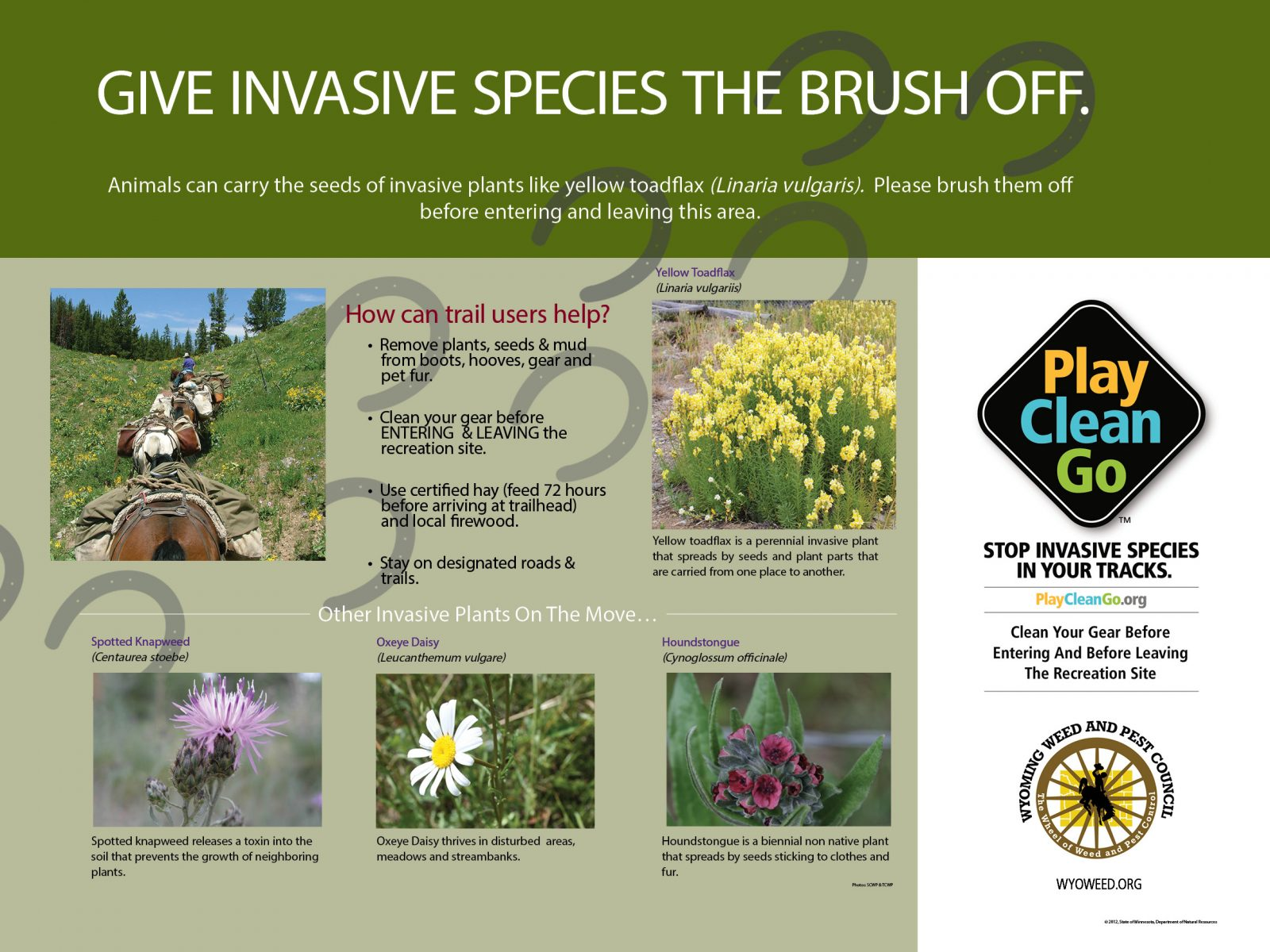 PCG Boot Brush Trail Poster: Horse