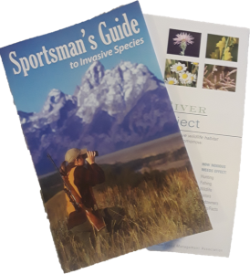 Sport Guide pdf